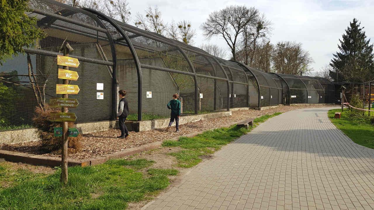Zoo w Zamośćiu - najlepsze zoo w Polsce?
